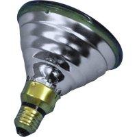 Reflektorová žárovka PAR 38, E27, 80 W, typ Economy-flood, zelená