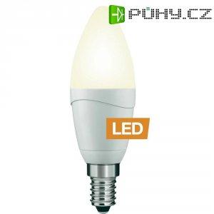 LED žárovka Ledon B35/M, 25000788, E14, 5 W, 230 V, teplá bílá
