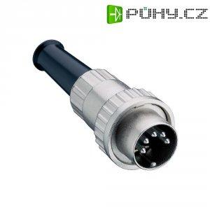 DIN kruhový konektor Lumberg 0132 04 zástrčka, rovná, Pólů: 4, stříbrná, 1 ks