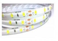 LED pásek 10mm,bílý,60xLED5630/m, IP65, 6000K, cívka 5m