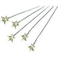 Světelné LED stonky s 5-ti hvězdami, teplá bílá, 5 ks