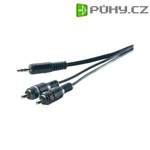 Připojovací kabel SpeaKa, jack zástr. 3.5 mm/cinch zástr., šedý, 5 m