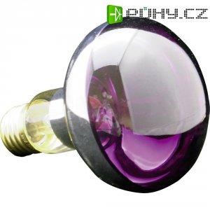 Žárovka, 60 W, E27, fialová