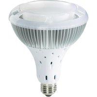 LED žárovka PAR38, E27, 17 W, 230 V, 160 mm, studená bílá