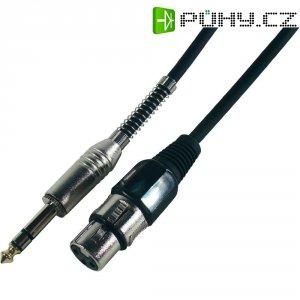 Kabel stereo jack (M) 6,3 mm / XLR (F), 3 m