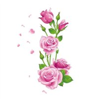 Tapeta Růže