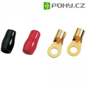 Kabelové oko pro Hi-Fi do auta Sinuslive RKS 10 P 8, 10 mm², sada 8 ks
