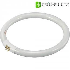 Kruhová úsporná zářivka Toolcraft T5, 22 W, G10q