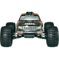 RC model EP Monstertruck Reely Detonator, 1:10, 4WD, RtR 2.4 GHz