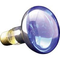 Žárovka, 2570.72, 25 W, E14, modrá