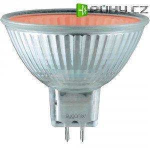 Halogenová žárovka Sygonix, GU5.3, 20 W, 49 mm, stmívatelná, červená