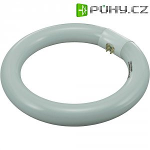 Kruhová úsporná zářivka Toolcraft, 22 W, G10q, denní bílá