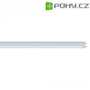 LED zářivka Osram, G13, 9 W, 230 V, 603 mm, teplá bílá