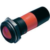 LED signálka CML, 195E1231M IP67, 22 mm, 230 V/AC, zelená