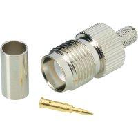 Konektor TNC Reverse BKL Electronic 419404, 50 Ω, zásuvka rovná