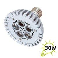 Žárovka LED E27/230V (5x1W) bílá