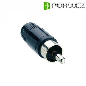 Cinch konektor Lumberg STO 1, 2pól., černá