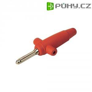 Banánkový konektor Ø pin: 4 mm SKS Hirschmann Buela 300 K, zástrčka, rovná, červená, 1 ks