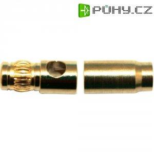Kontakt 6 mm Modelcraft, zástrčka a zásuvka, zlatý