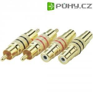 Sada cinch konektorů, 2x zástrčka/zástrčka, 2x zásuvka /zásuvka