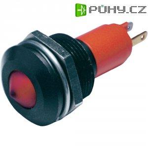 LED signálka CML, 19 mm, 12 V, bílá