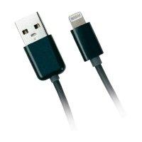 USB 2.0 nabíjecí/datový kabel pro Apple iPad/iPhone/iPod s Lighting konektorem, černý, 1