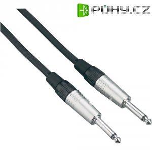 Instrumentální profi kabel JACK 6,3 mm Paccs, 6 m, černá