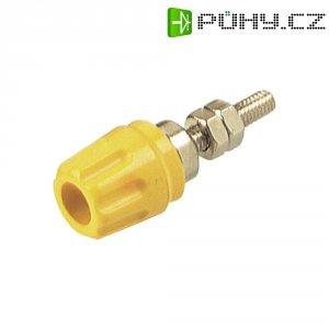 Pólová svorka SKS Hirschmann PK 10 A (930099103), (Ø x d) 14 x 42 mm, žlutá