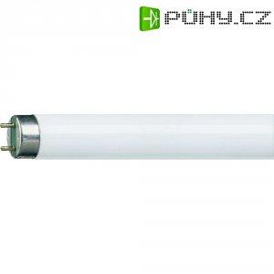 Sada zářivek Osram, G13, 18 W, 590 mm, 25 ks, teplá bílá