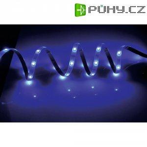 LED pásek, 168052, 5 m, modrá