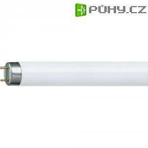 Úsporná zářivka Osram, 18 W, G13, 590 mm, studená bílá