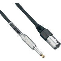 Kabel XLR (M) / jack (M) 6,3 mm, 10 m